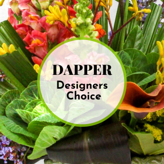 Dapper Designers Choice