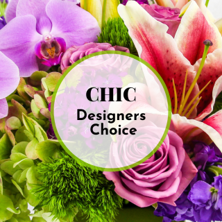 Chic Designers Choice