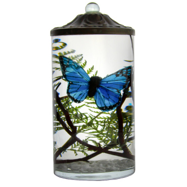 Blue Butterfly Cylinder