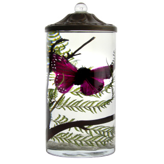 Purple Butterfly Cylinder