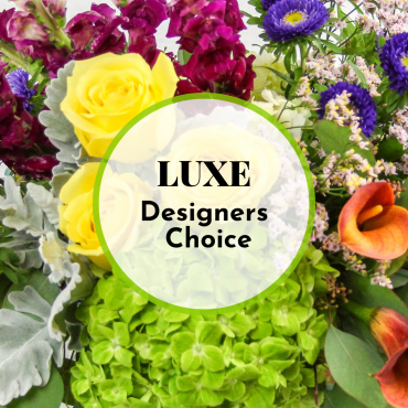 Luxe Designers Choice